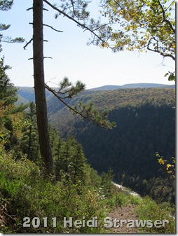 fall 2011 023