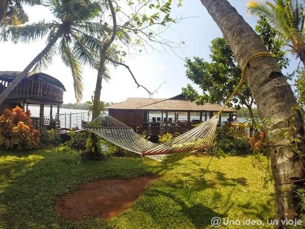 Kerala-backwaters-Kollam-2.jpg