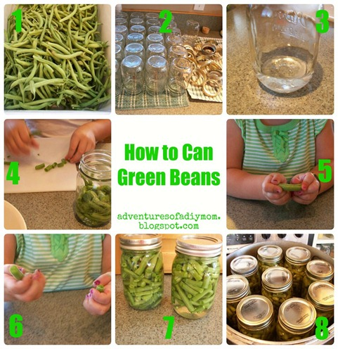 Green Bean Collage