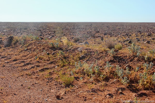Moon Plain, Coober Pedy