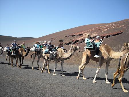 Echadero de Los Camellos Lanzarote