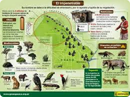 Impenetrable-Infografia