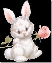 conejos pascua (70)
