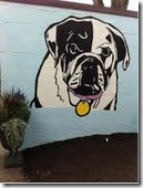 Cincinnati SPCA Dog Mural