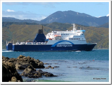 "Bluebridge ferry ""Straitsman"" with a cargo of motorhomes heading South."