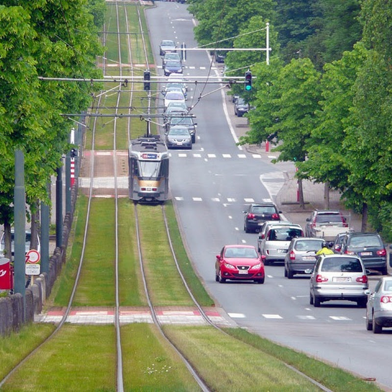 Grass Covered Tram Tracks in Europe
