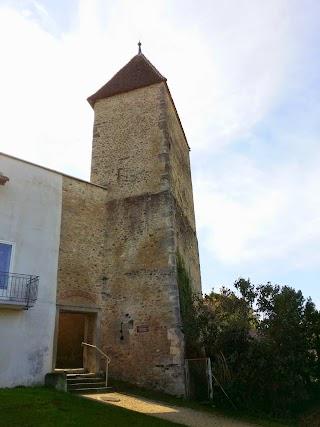Tour du Vully à Avenches