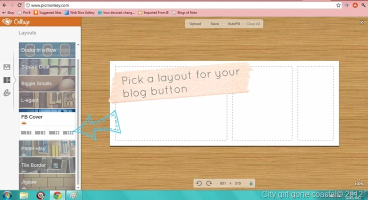 choosing a blog button style