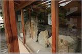 Fossilienschau in Mölten