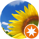 Kvetinárstvo Slnečnica