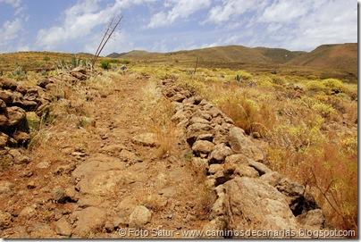 5838 Pico las Nieves-Temisas