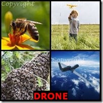 DRONE- 4 Pics 1 Word Answers 3 Letters