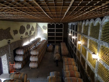 Drumul vinului -Basarabia: Podgoria Asconi