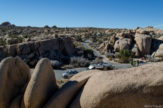 Joshua Tree Morning (51 of 54)