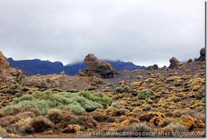 041 Cañadas del Teide