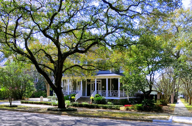 Historic Homes in Georgetown, SC