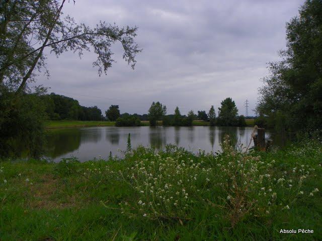 Etang le Tilleul photo #343