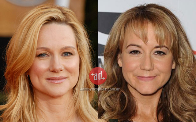 Celebrity Look-alikes: Laura Linney Megyn Price