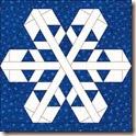 Snowflake 5  v3