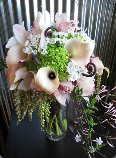 559036_10150617236325957_540622548_n flora bella
