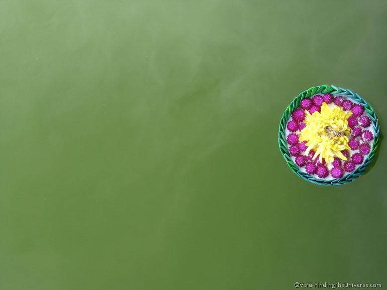 Loi Krathong Lotus Float