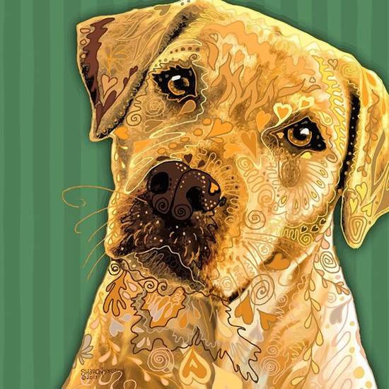 sharon marston yellow lab