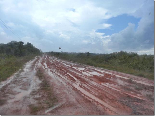BR-319_Humaita_Manaus_Day_2_DSC05434