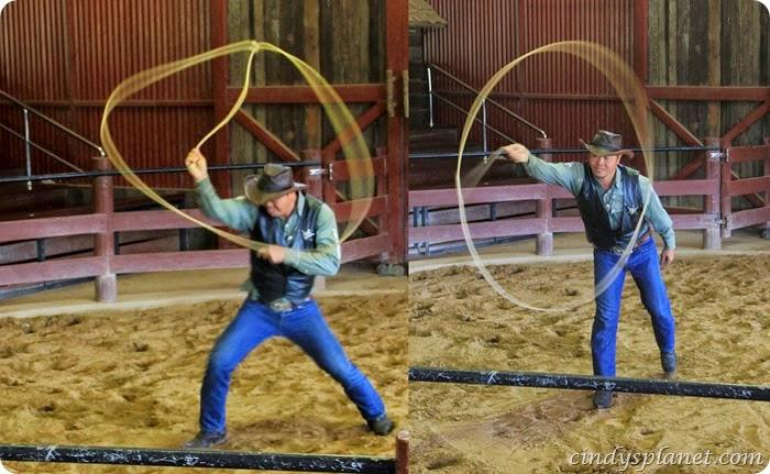 chok chai farm cowboy trick roper