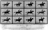 The Horse in Motion - Eadweard Muybridge