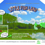 LITTLE FISH LAND photo #1487
