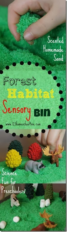 Forest Habitat Sensory bin to help toddler, preschool, kindergarten, and first grade learn about habitats in a fun, hands on and playful way (science)