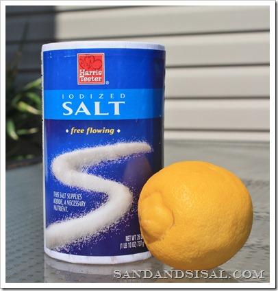 Salt and lemon