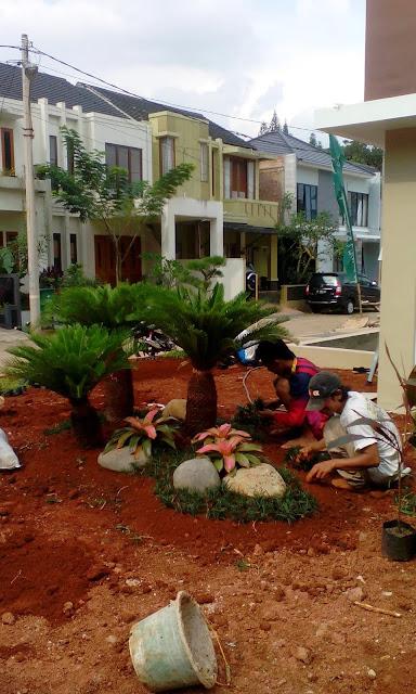 Menerima jasa pembuatan taman, renovasi taman