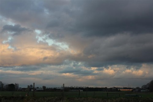 20081203 (Small)