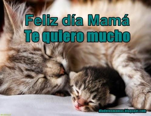 te quiero mama w