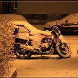 der erste richtige Schnee 2008