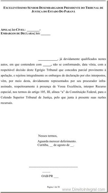 Modelo De Recurso Especial Direito Integral