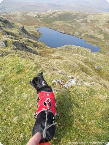 stony tarn from whin crag
