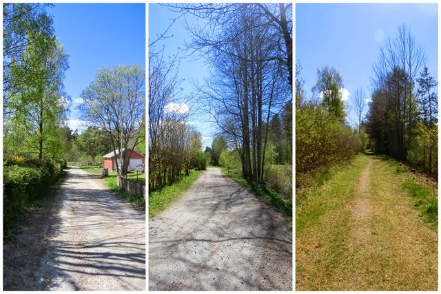 2014-05-04 country road