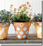 shelf liner decorated planters
