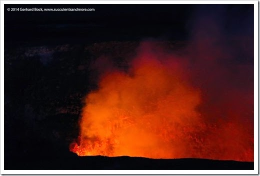 140724_HawaiiVolcanoesNP_0270