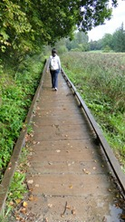 Trilha no Parque Nacional Gauja