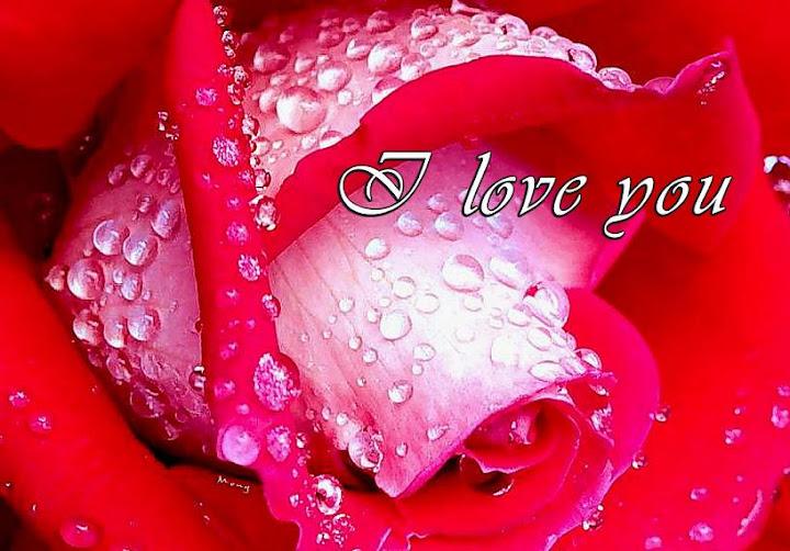 Lindas postales de amor facebook