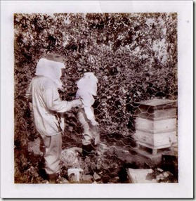 beekeeping ghosts