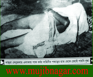 Bangladesh_Liberation_War_in_1971+20.jpg