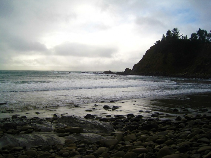 Cape Arago State Park Coos Bay Oregon