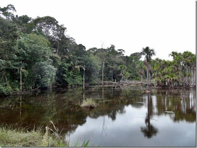 BR-319_Humaita_Manaus_Day_1_DSC05142