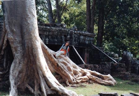 Obiective turistice Cambogia: templu cu paduri Angkor Wat
