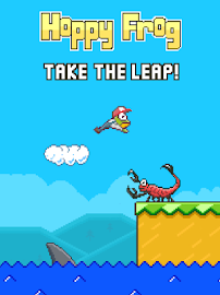 Hoppy Frog Screenshot 10