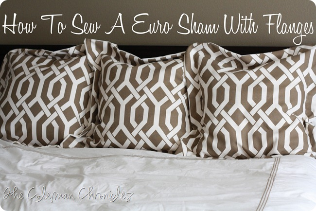 coleman chronicles how to sew a pillow cover with flanges. Black Bedroom Furniture Sets. Home Design Ideas